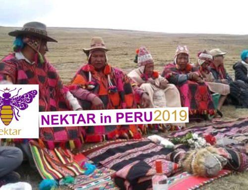 Μεγάλη Μύηση, Περού 2019